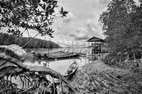 buy a fishing boat in thailand thailand fishing boat docked by mangroves