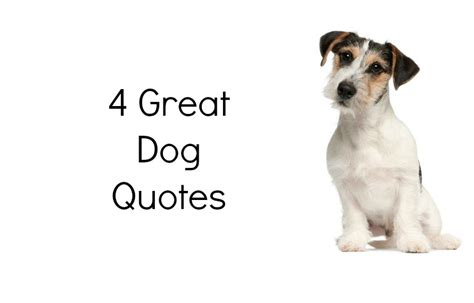 quotes about puppies quotes about your quotesgram