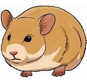 Cute Brown Hamster Vector Graphics Vectortoons Com