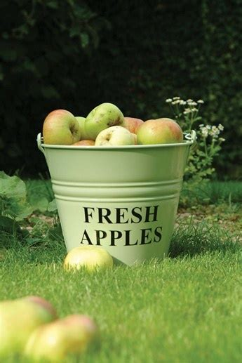 big red bath orchard b00c7crpd4 17 best images about apples in literature on north america apples and snow white