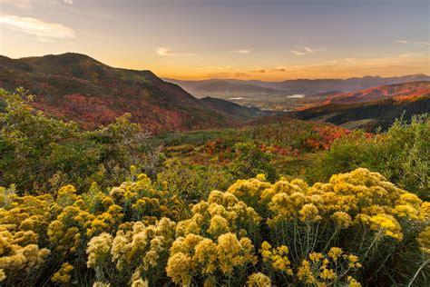 utah landscape big mountain fall utah landscape photography