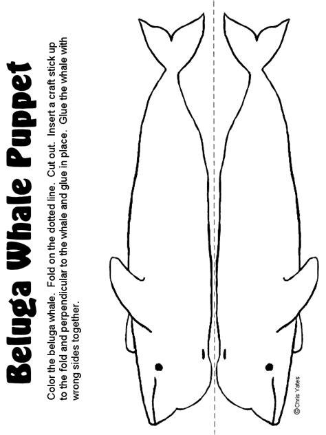 printable lyrics baby beluga beluga whale puppet homeschool haven pinterest