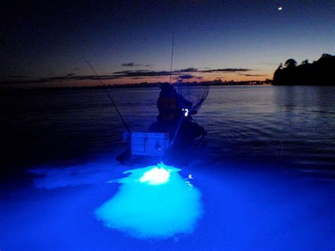 ski boat underwater lights fishing ready jetski pwc heading out for the morning