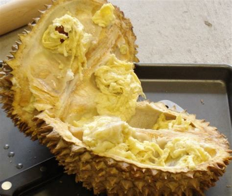 Durian Cup Quot food that look fugly