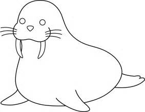 animal outlines colorable walrus free clip