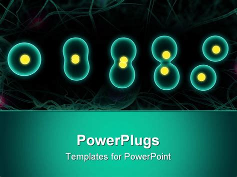 Cell Powerpoint Template Briski Info Cell Powerpoint Template