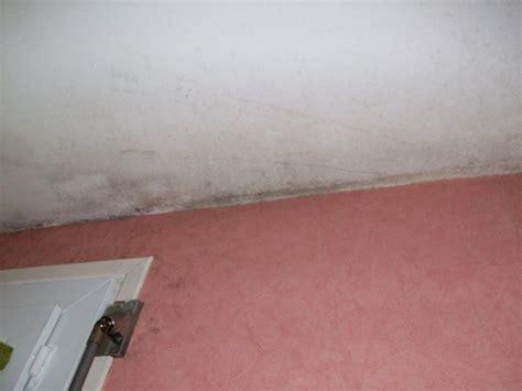 Enlever Tache Humidité Plafond by Taches Moisissures Plafond Bande Transporteuse Caoutchouc