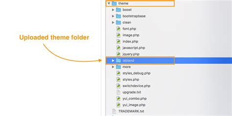 moodle themes folder newly installed moodle theme not showing up in the theme