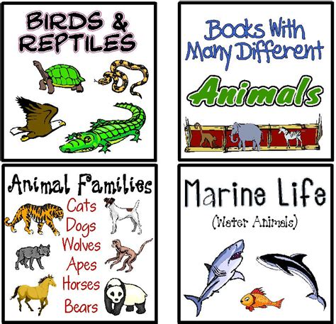 templates for making books in the classroom classroom library labels template nonfiction basket