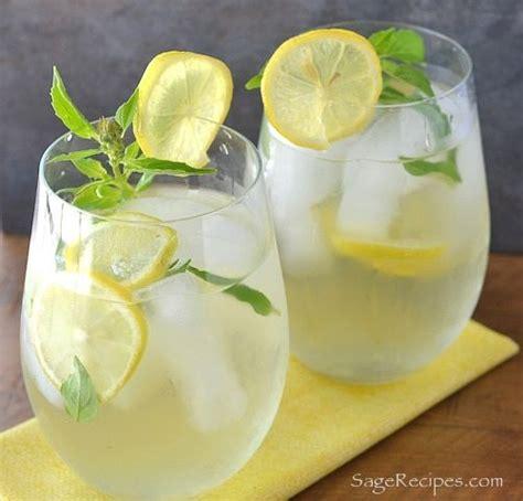 Lemon Basil Detox Tea by Best 25 Lemon Lime Water Ideas On Cucumber