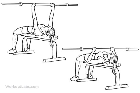 flat bench barbell press how to build triceps if you are a girl photo tips are