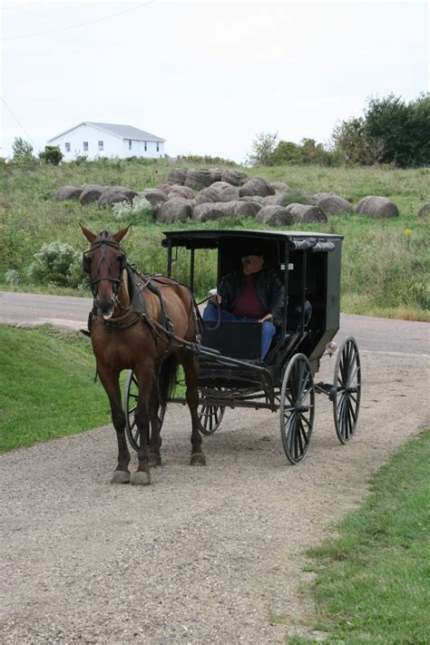 1408 best amish and mennonite images on amish