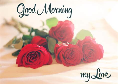 good morning love greetings good morning messages sayings and pictures