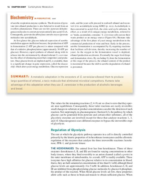 carbohydrates essay essay questions on carbohydrate metabolism
