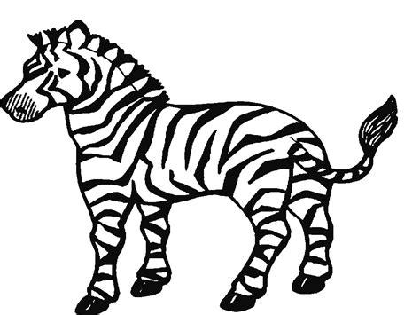 dibujos infantiles cebra dibujo cebra para colorear dibujos imagixs pictures