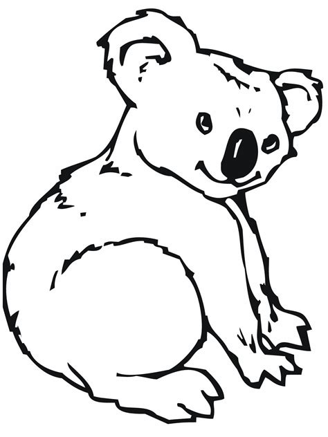 realistic koala coloring pages free printable koala coloring pages for kids