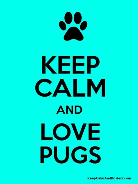 keep calm and pugs keep calm and pugs keep calm and posters generator maker for free