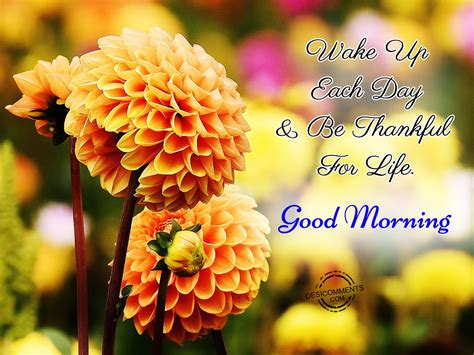 good morning images con wake up each day be thankful for life good morning