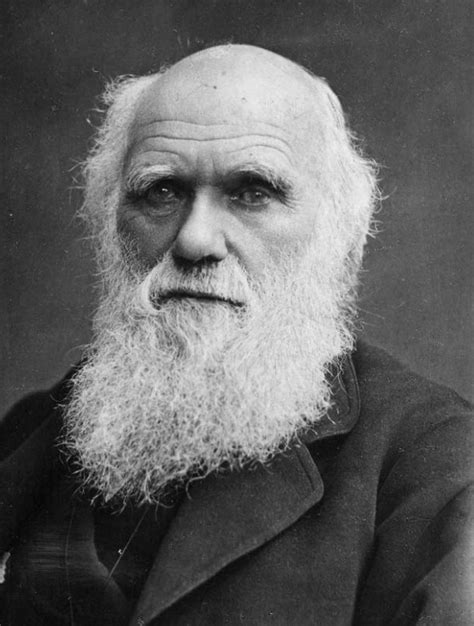 extinction quotes darwin quotesgram