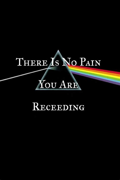 pink floyd comfortably numb lyrics meaning 232 best images about pink floyd on pinterest pink floyd