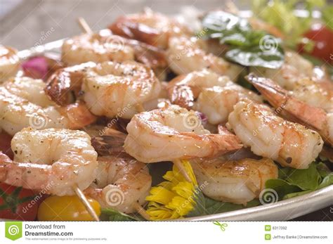 Lunch Animals Skewer shrimp on a skewer stock photography image 6317092