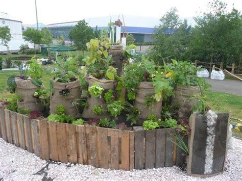 urban green nairobi kenya sack garden project
