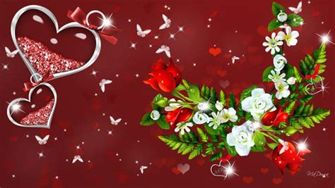 themes for rose day 17 beautiful red rose wallpapers