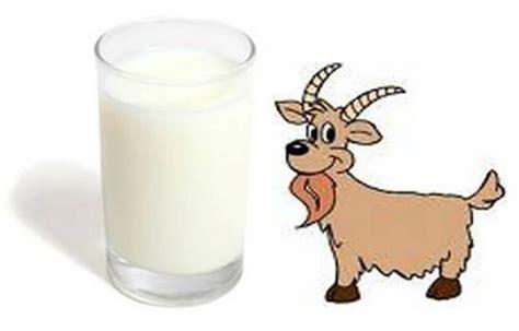 manfaat susu kambing  kecantikan kulit