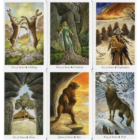 the wildwood tarot the wildwood tarot cards book set mark ryan john matthews