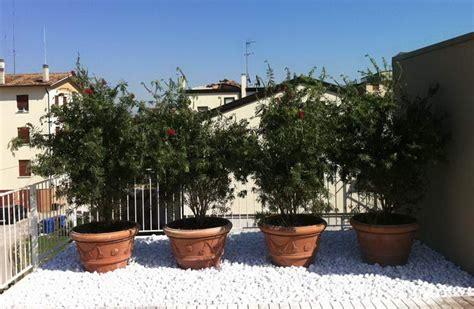 giardino su terrazzo trendy di terrazzi with giardino su terrazzo