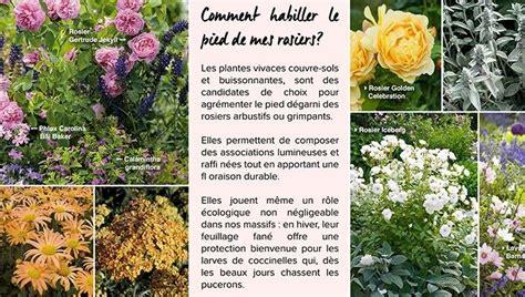 Potager Sur Pied 775 by Promesse De Fleurs