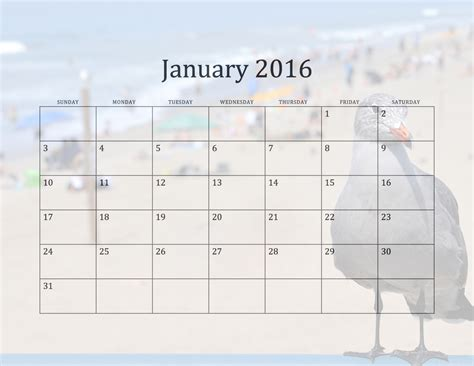 Calendar 2016 January January 2016 Calendar Free Stock Photo