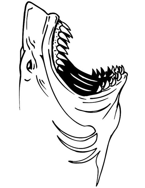 thresher shark coloring page jaws the shark coloring pages grig3 org