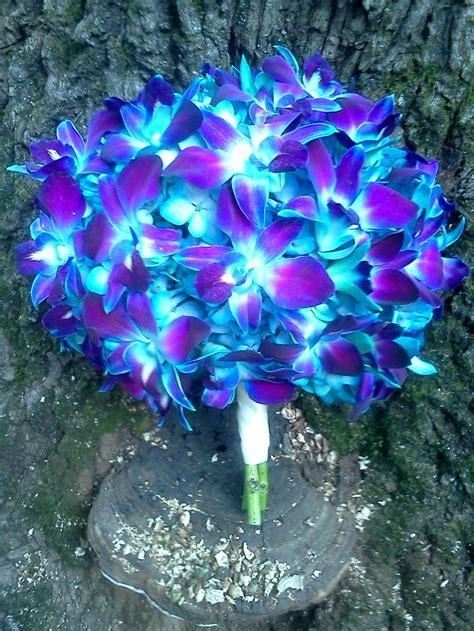 Blue Orchid Wedding Bouquets