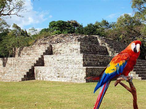 imagenes de mayas en honduras cop 225 n ruinas una joya del turismo en honduras