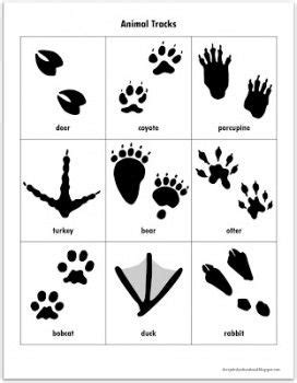 Free Animal Tracks Matching Game Printables | Gaming