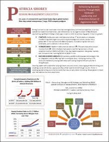 infographic resume sles award winning executive resume exles