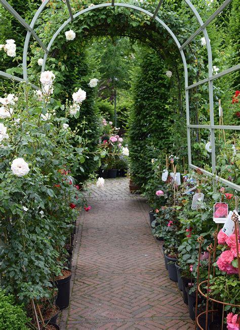 Garten Pflanzen Kaufen Berlin by Pflanzen Kaufen Berlin K Nstliche Pflanzen Kunstpflanzen