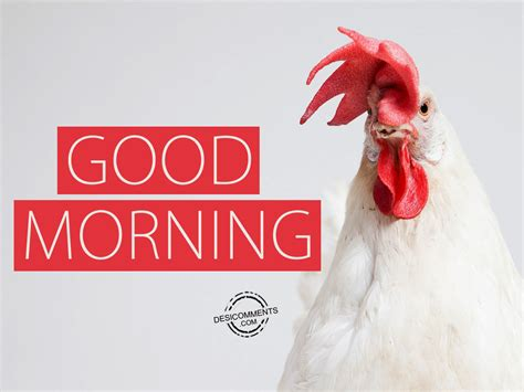 Good Morning Images Con | good morning picture desicomments com