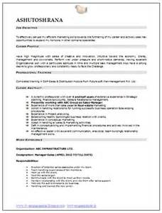 professional curriculum vitae resume template sle