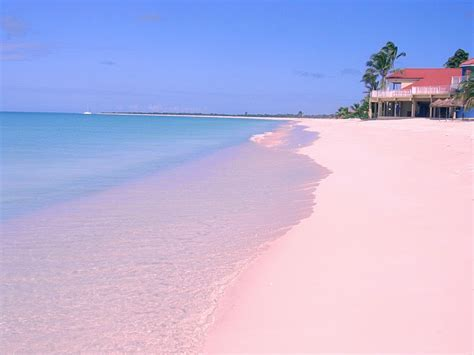 pink sand beach 10 colorful beaches around the world top 10s