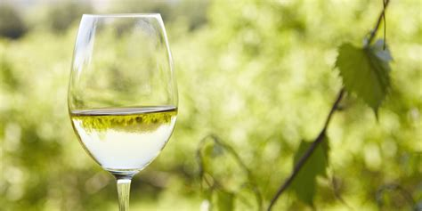 white wine white wine from norfolk named one of the s best