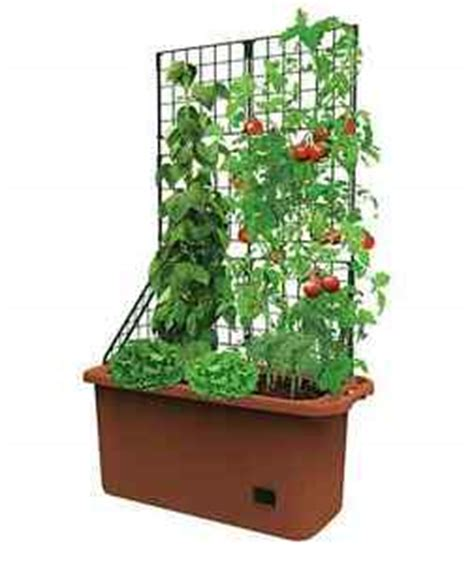Vegetable Planter Boxes For Sale by Outdoor Pot Patio Courtyard Garden Planter Box Large