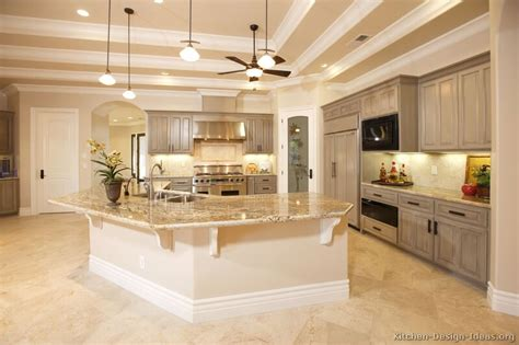 kitchens ideas pictures pictures of kitchens traditional gray kitchen cabinets