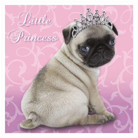 pug birthday cards document moved