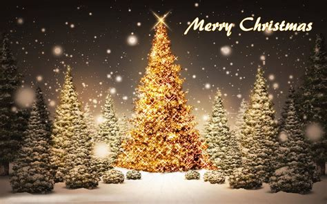merry christmas tree wallpaper merry free hd wallpapers let us publish