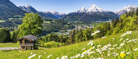 urlaub alpen österreich alpen 214 sterreich wiese urlaub sommer 2 1170x500px