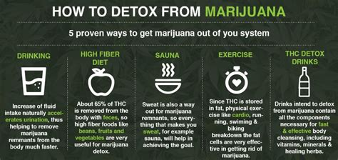 How To Detox Out Of Your System Fast by Best Marijuana Cleanses Potent