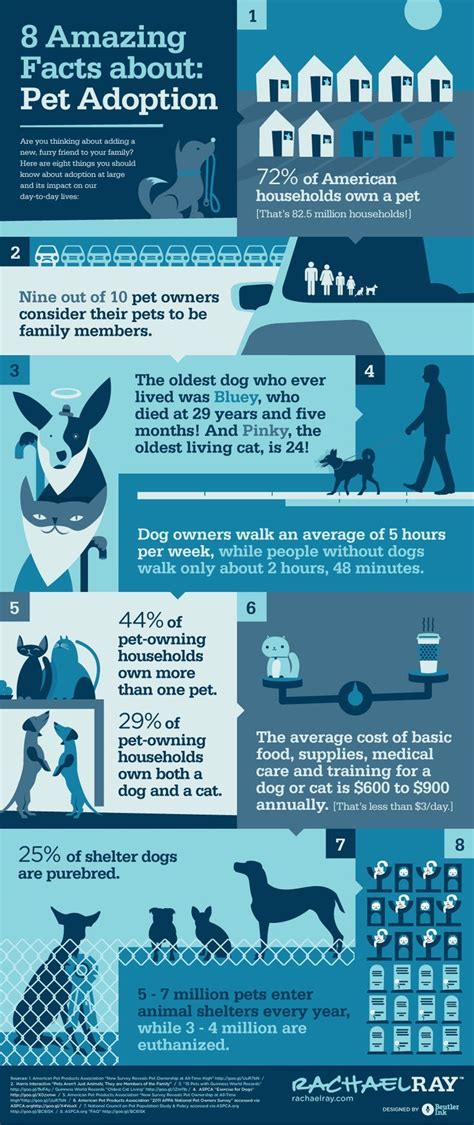 facts the pet parent s a to z home care encyclopedia books 8 amazing facts about pet adoption family health