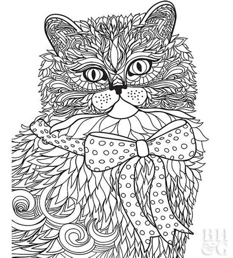 pet coloring pages  homes gardens